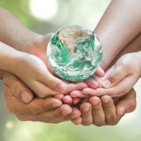 Camino hacia la sostenibilidad