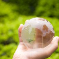 Pasos hacia la sostenibilidad