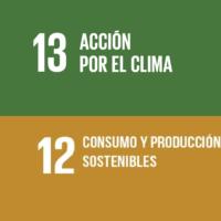 Proveedores y ODS